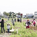 彰化市花海「幸福萌芽,無限花想」-彰化市彰草路14.jpg