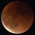 紅色月全食~超級滿月.JPG