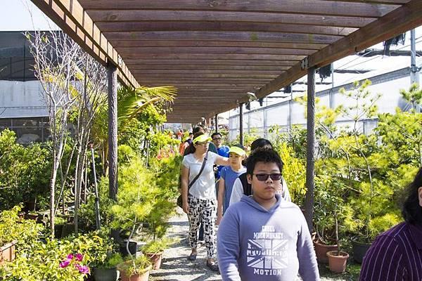 芬園花卉生產休憩園區12.jpg