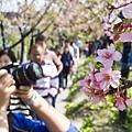 芬園花卉生產休憩園區18.jpg