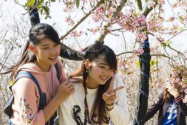 芬園花卉生產休憩園區20.jpg