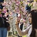 芬園花卉生產休憩園區19.jpg