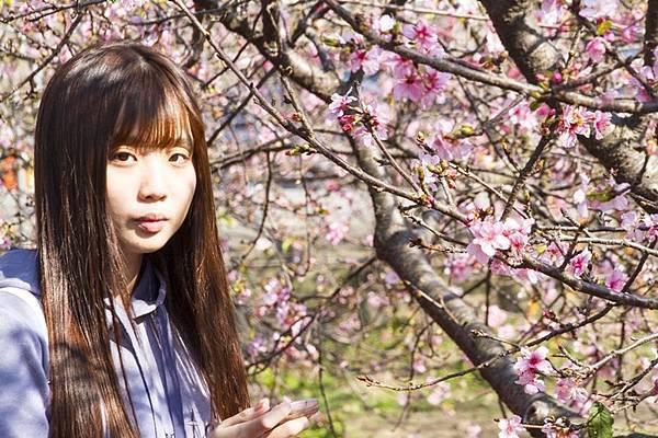 芬園花卉生產休憩園區21.jpg