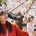 芬園花卉生產休憩園區22.jpg