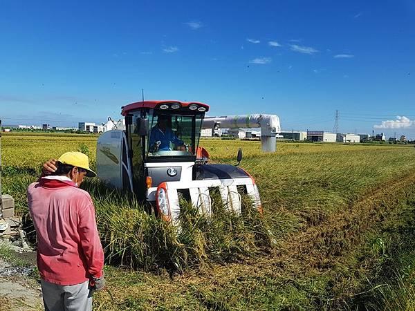 農民職災保險11月試辦上路 增進農民職業安全保障.jpg
