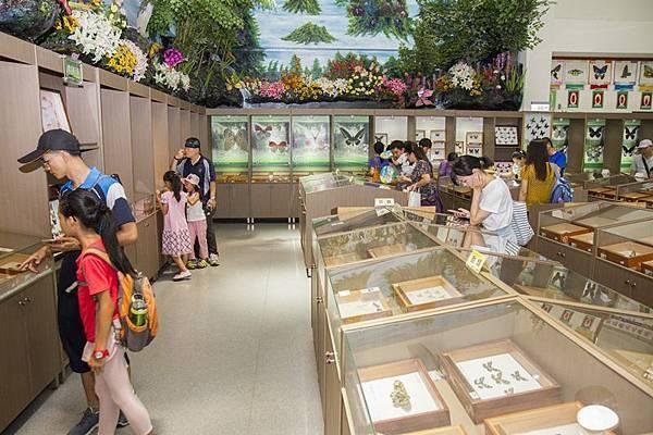 2018八卦山獨角仙藝術節 來彰化社頭清水岩生態旅遊30.jpg