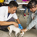 彰化縣寵物登記及狂犬病疫苗預防注射巡迴活動1.png