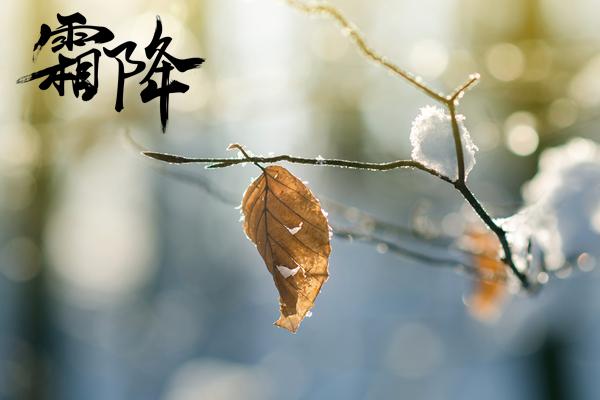 霜降第十八個節氣 秋冬轉折點注意保暖.png