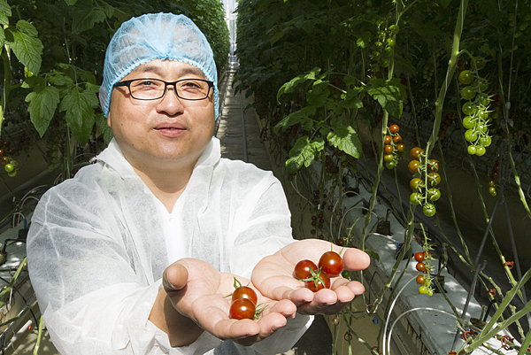 番茄方舟獨家「琥番茄」發表 茄紅素倍增高營養價值1.png