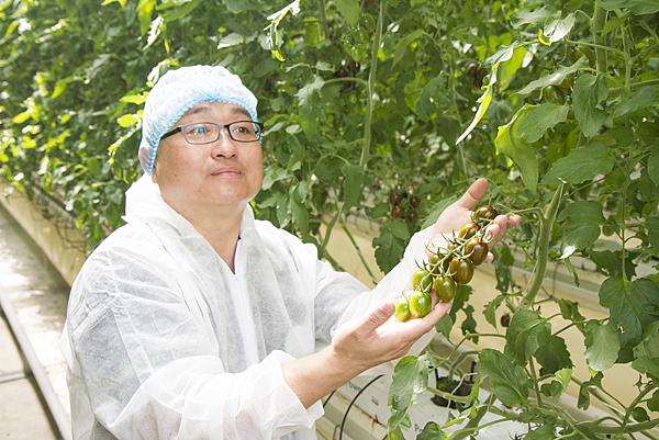 番茄方舟獨家「琥番茄」發表 茄紅素倍增高營養價值2.png