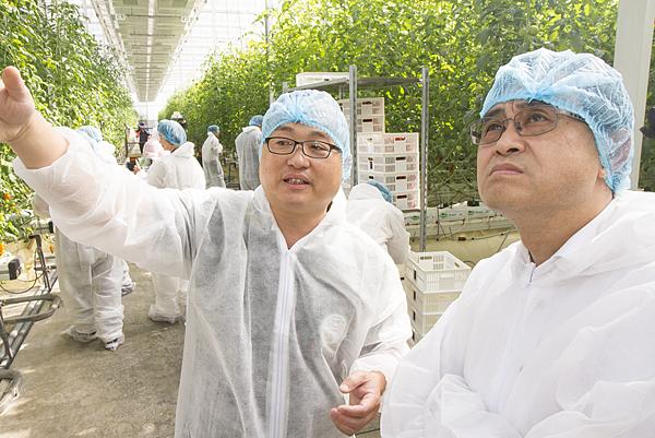 番茄方舟獨家「琥番茄」發表 茄紅素倍增高營養價值3.png