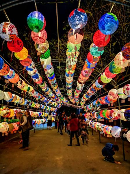 彰化燈會光雕秀點燈 花在彰化首日破8萬人到溪州公園7.png