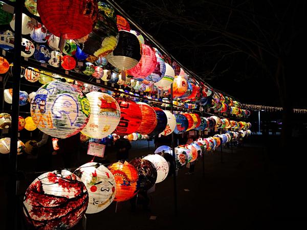 彰化燈會光雕秀點燈 花在彰化首日破8萬人到溪州公園6.png