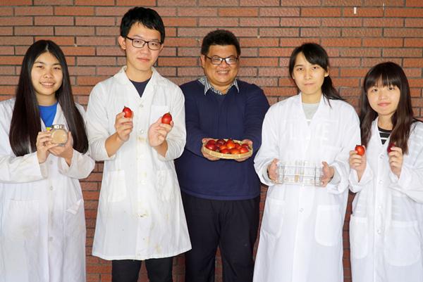 大葉大學藥保系李柏憲老師(中)帶領學生做實驗,證實樹番茄有助於傷口癒合.png