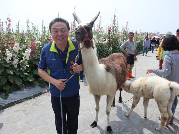 員林蜀葵花觀光園遊會 南區運動公園盛大開幕1.png