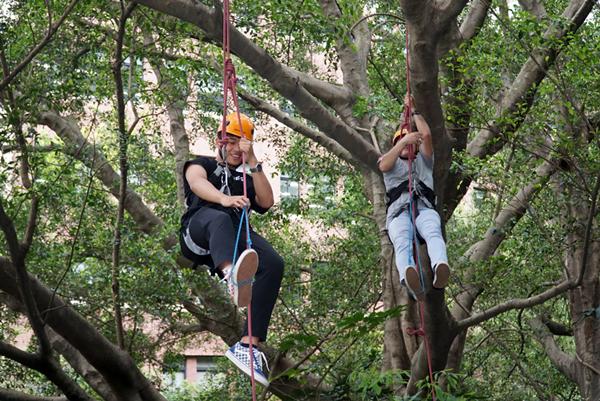 攀樹體驗 大葉大學「城鄉與社區概論」開啟學生新視角2.png
