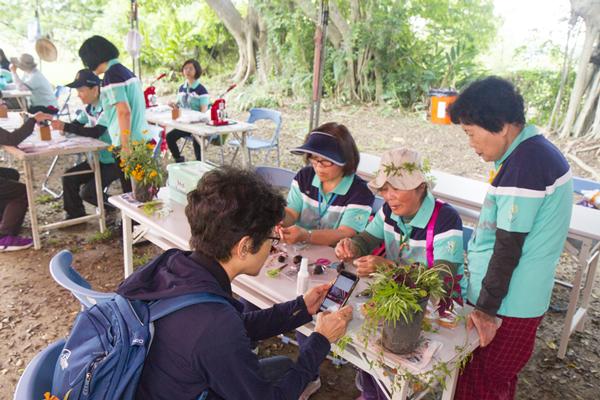 紫斑蝶過境彰化八卦山脈 「紫耀八卦」迎嬌客在成功營區登場2.png