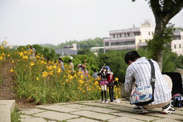 花壇虎山岩金針花盛開打卡景點 遊客絡繹不絕竟出現採花賊2.png