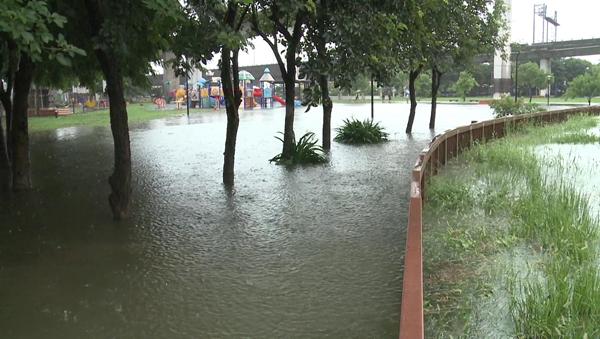 彰化市景觀公園淹水拉封鎖線 魚兒都游上岸了2.png