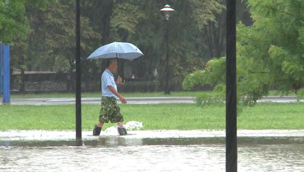 彰化市景觀公園淹水拉封鎖線 魚兒都游上岸了1.png