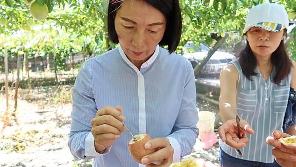 溪湖鎮果農種出「係金」百香果 黃瑞珠大讚2.jpg