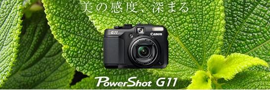 g111.jpg