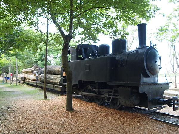 P7108446.JPG