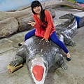 我只敢跟假鱷魚合照