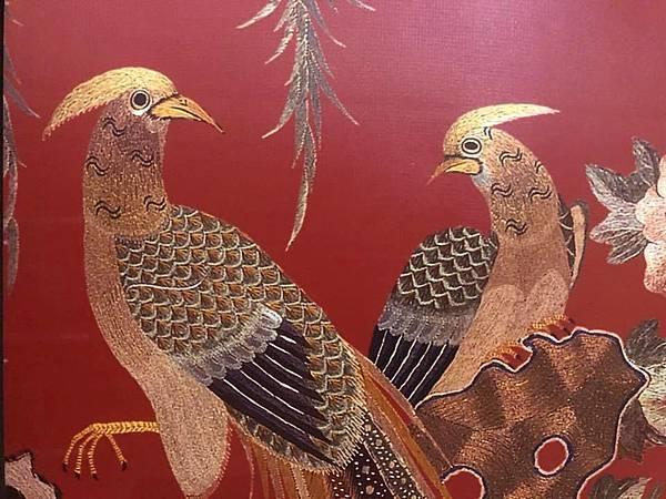 雉雞1.jpg