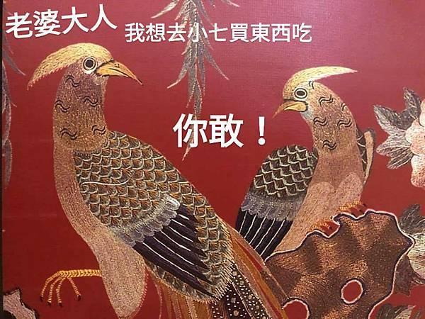 雉雞2.jpg