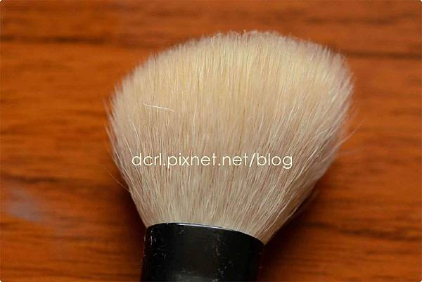 brush cleanser13