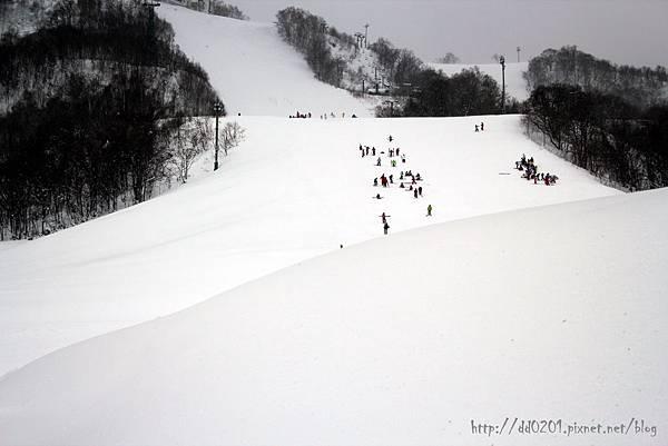 北海道 369.jpg