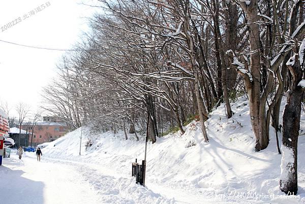 北海道 347.jpg