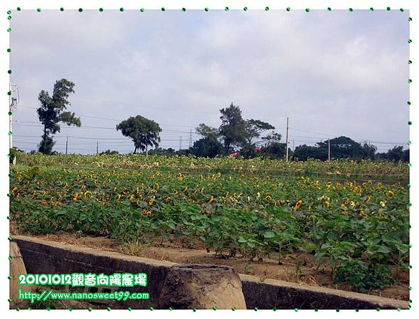 20101012向陽農場