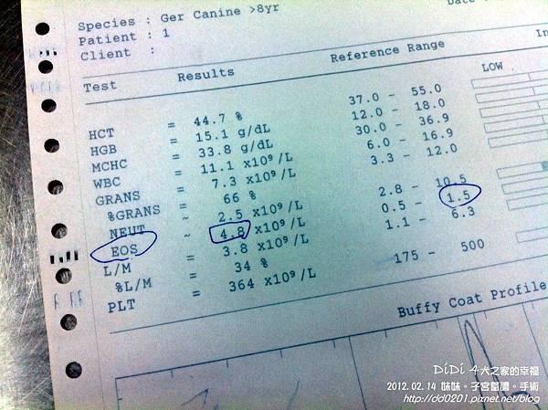 20120214妹頭子宮蓄膿2次結紮