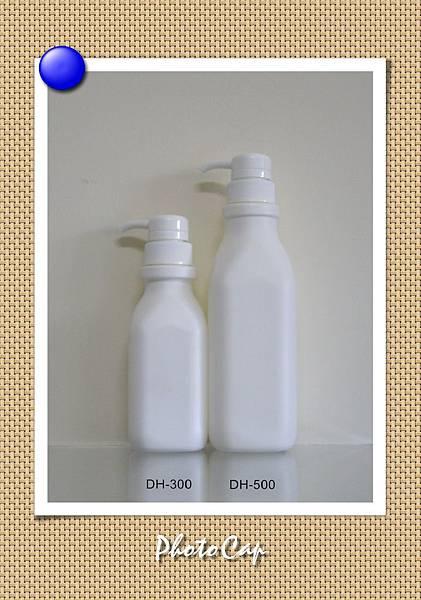 DH-300500 002-1.jpg