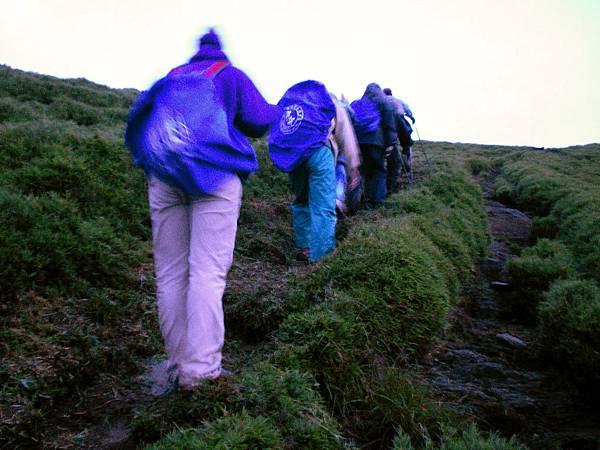 奇萊南峰登頂前,緩慢上坡的大家