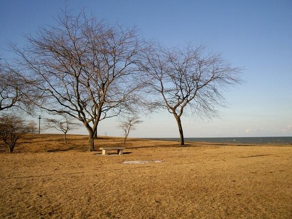 湖畔的蕭瑟