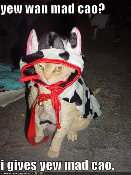 你喝的是牛奶嗎?你確定?