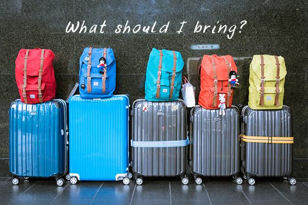 luggage-933487