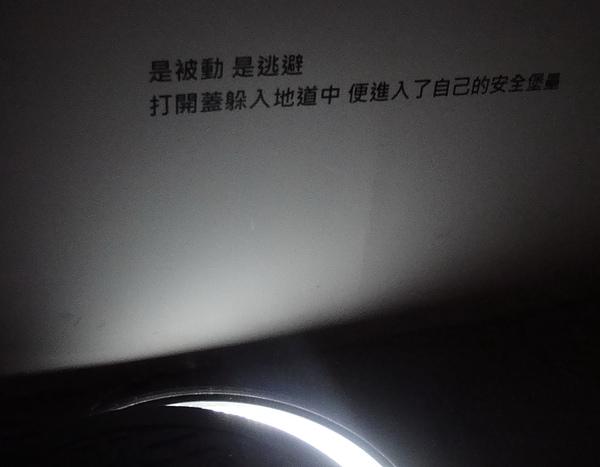 熊照片 030.jpg