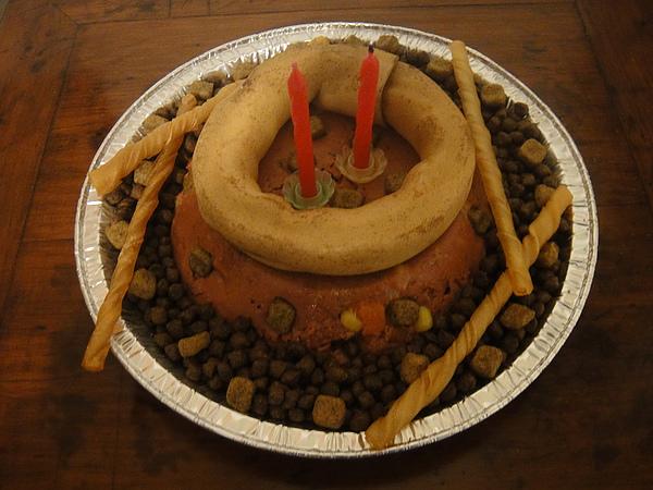 我和姊姊DIY做的狗蛋糕~呵呵~