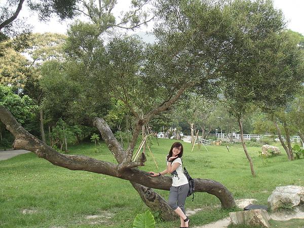呵呵~好山好樹呀~