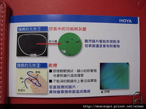 HOYA 006.jpg