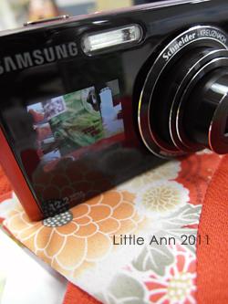 New Camera_18.jpg
