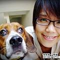 20110916-鹿-福.jpg
