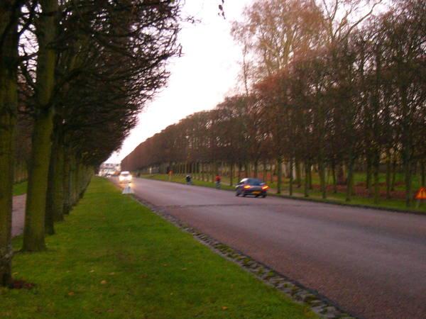 凡爾賽宮連外道路