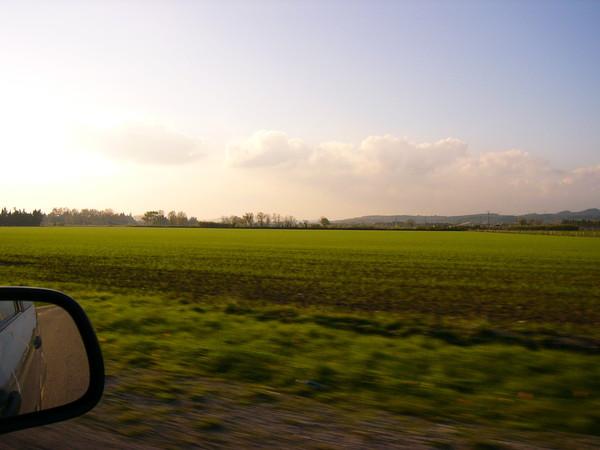 亞維農往亞耳(Arle)的途中