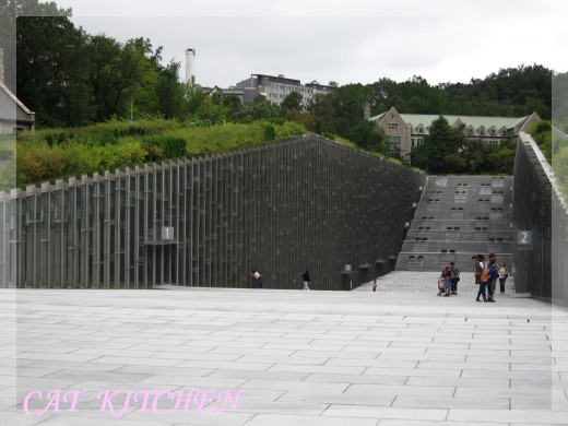 梨花新村1.JPG