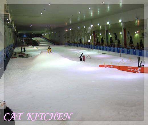 室內滑雪場滑雪道.JPG